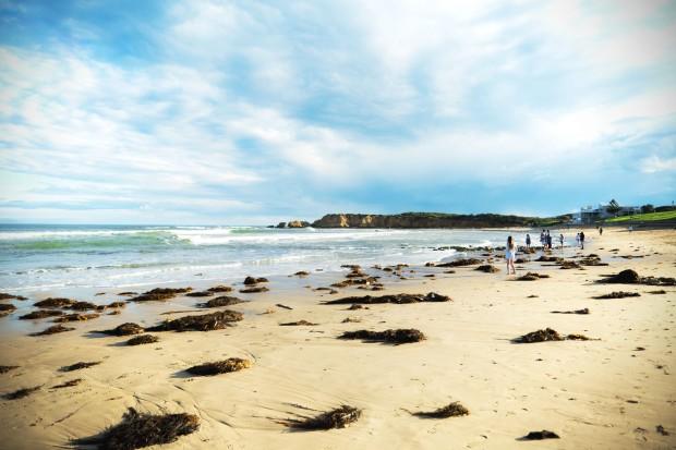torquay_beach
